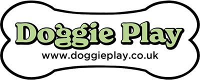 Doggie Play Belfast